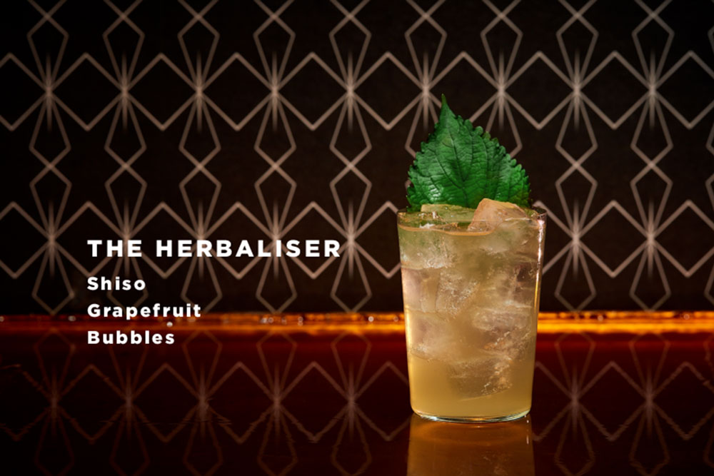 The-Herbaliser-the-grid-cocktail-bar-koeln